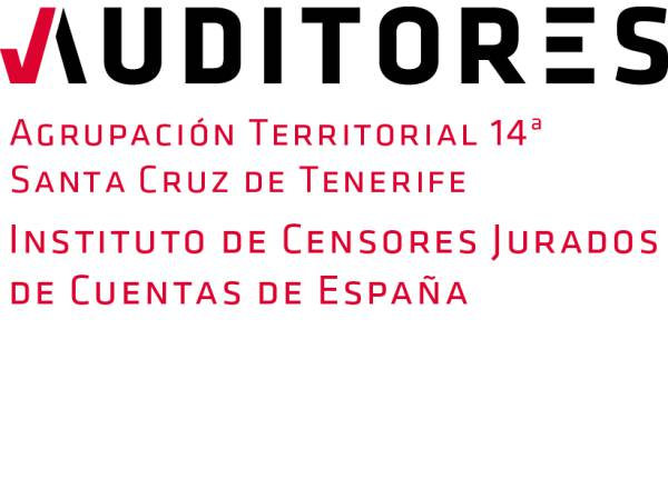 AUDITORIA DE ESTIMACIONES CONTABLES